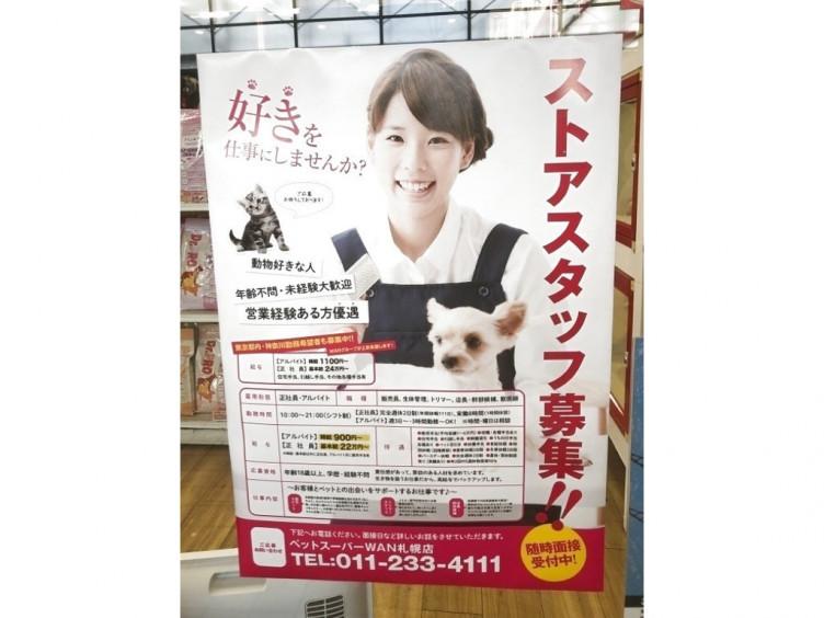 猫カフェ 札幌 求人