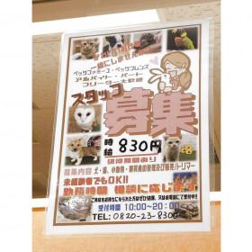 ペッツファミーユ 柳井店