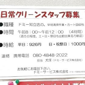 ドミーサービス株式会社(ドミー知立店)