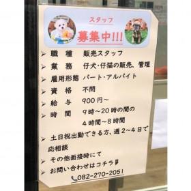 ペットワールド アミーゴ 広島商工センター店