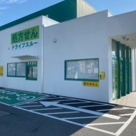 エバグリーン薬局 四ヶ郷店