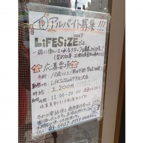 LiFESiZEadd9(ライフサイズ アドナインス)