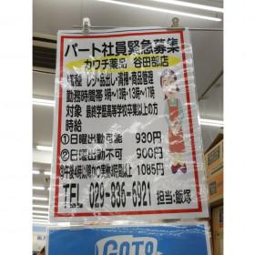 カワチ薬品 谷田部店