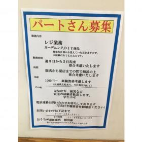 オリンピック/おうちDEPO/シューズフォレスト おりーぶ新座店