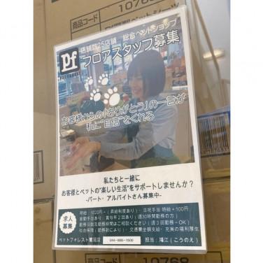 ペット 宮崎台 センチュリー