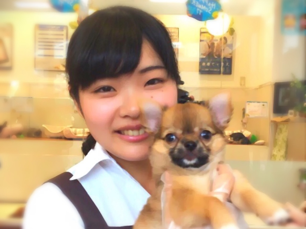 ペットプラス イオンモール新小松店の画像・写真