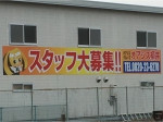オアシス 柳井店