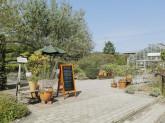 生活の木 薬香草園 ガーデン
