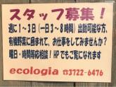 ecoiogia(エコロジア)