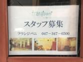 frangipani(フランジパニ)
