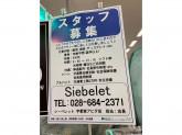 Siebelet(シーベレット) 宇都宮アピタ店