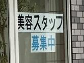 POTOS(ポトス)