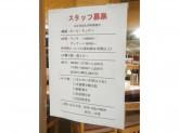 博多もつ鍋 やまや 新宿マインズタワー店