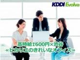KDDIエボルバ / 1190702130