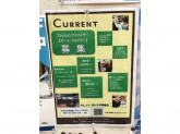 CURRENT(カレント) ヨシヅヤ津島店