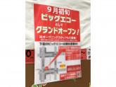 ビッグエコー 堺筋本町安土町店(仮)