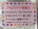 ペットショップBABYDOLL 町田一番街店