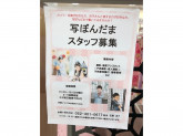 写ぼんだま ヨシヅヤ清洲店