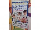 サーティワンアイスクリーム ららぽーとTOKYO-BAY北館店