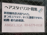 ANGELICA(アンジェリカ) 本蓮沼店
