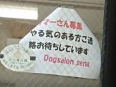 ドッグサロン セナ