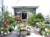 サクラヤ花店