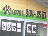 仔犬の広場 ペペ 本店