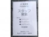 フェミンス
