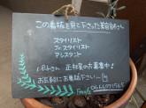Free/z(フリーズ)