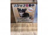ペッツワン 稲沢ハーモニーランド店