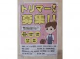 イオンペット 稲毛店