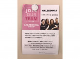 Calzedonia 名古屋ユニモール店