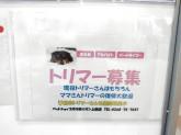 ペットショップ 犬の家&猫の里 イオン上田店