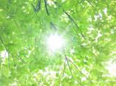 目黒区緑が丘  中学校給食 調理補助【パート】(13011)