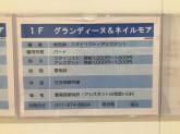 グランディーヌ/ネイルモア 札幌店