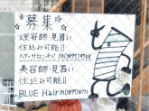 ヘアサロン千葉/Blue Hair