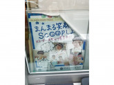 サーティワンアイスクリーム BiVi藤枝店