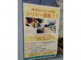 chikata to Luludoll (チカタトルルドール) 吉祥寺店