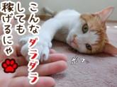日本マニュファクチャリングサービス株式会社a/yoko191128