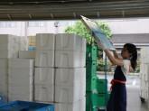 生活協同組合パルシステム東京 狛江センター