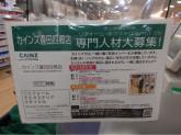カインズ 豊田四郷店