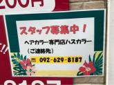 ハスカラー 吉塚店