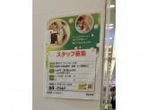 セリア 神戸ハーバーランドumie店◆店舗スタッフ♪