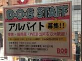 犬・雑貨好き歓迎☆D・O・Gショップでアルバイト募集中!