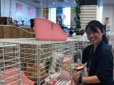 ◆◇ペットのいる暮らしを応援◇◆売場スタッフ(小動物)募集♪