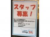 美味しいワインバルのお店☆魚の家BALでスタッフ募集中~♪