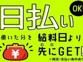 株式会社綜合キャリアオプション(0001GH0901G1★4-S-143)