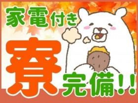 日本マニュファクチャリングサービス株式会社46/iba210715