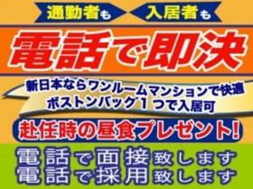 株式会社新日本/10498-6